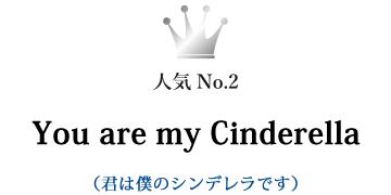 You are my Cinderella(君は僕のシンデレラです)